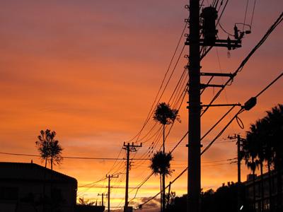 2009.11.14.jpg