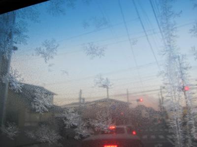 2010.01.15-1.jpg