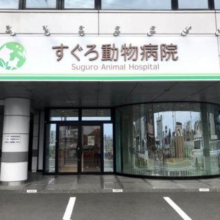 動物病院開業